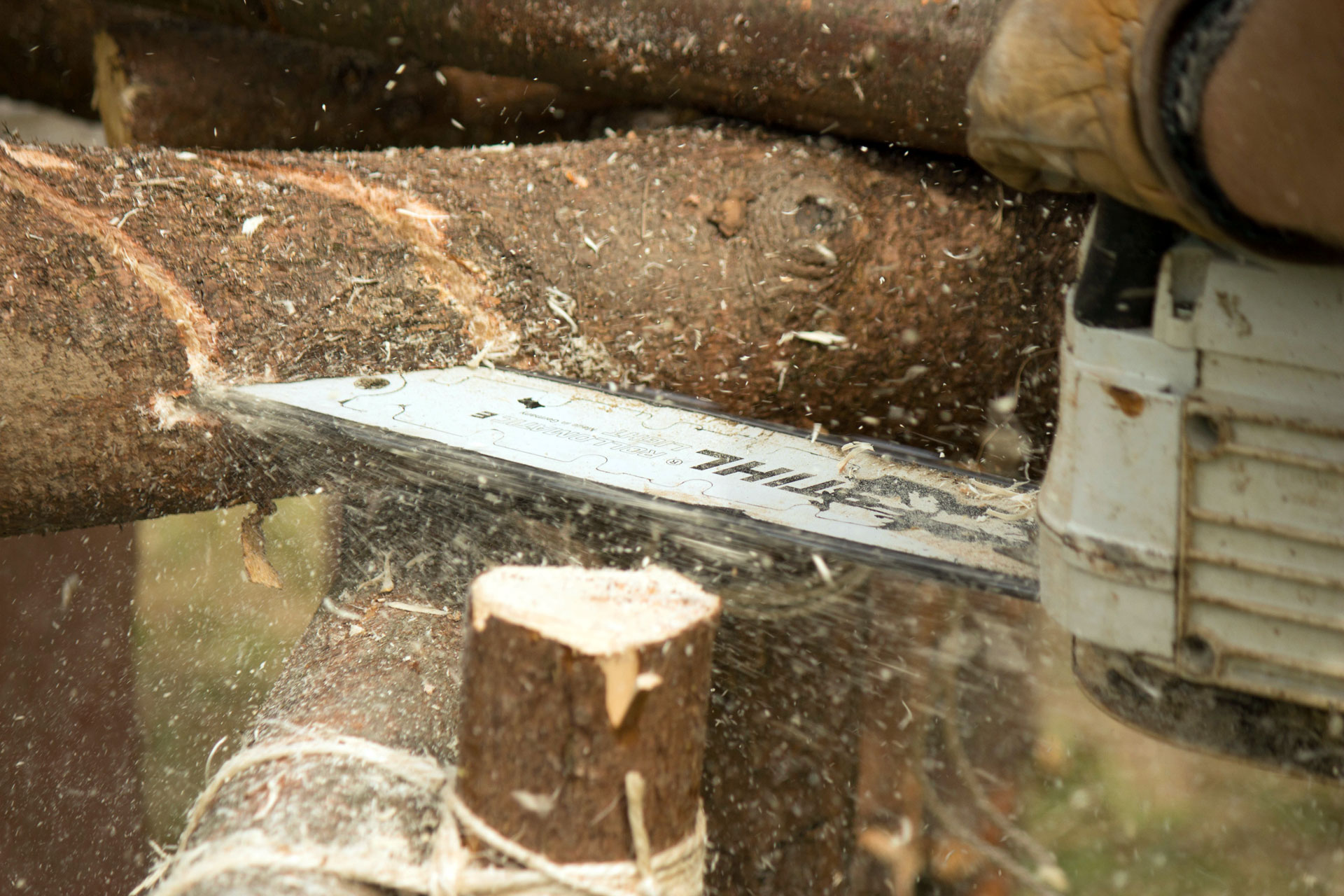chainsaw-1436522
