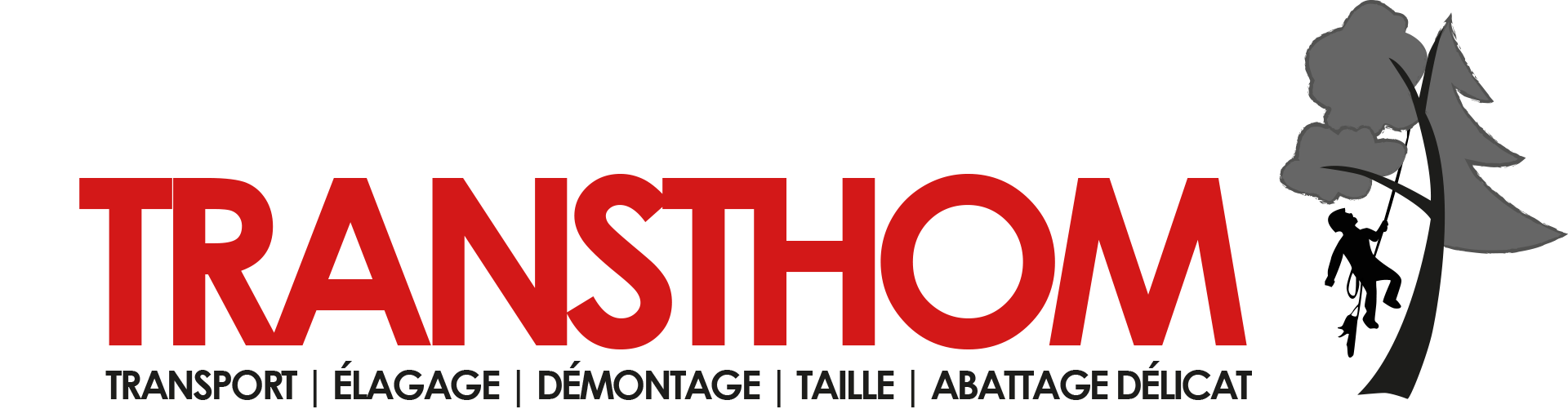 logo_transthom